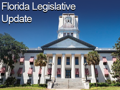 Florida Legislative Community Association Bills to Keep an Eye Out for in 2020
