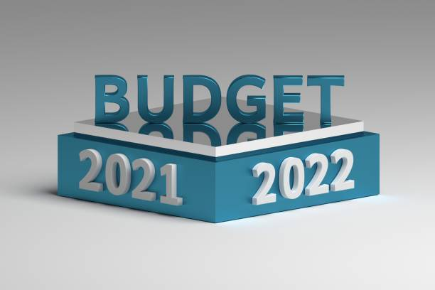 Budget Season 2021-22: New Factors to Consider Post Pandemic and Post Tragedy